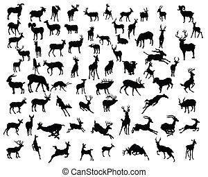 silhuetas, vetorial, -, deers, cobrança