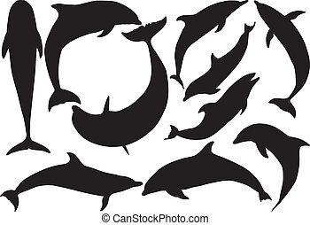 silhuetas, vetorial, golfinhos