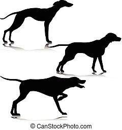 silhuetas, vetorial, pretas, três, cão