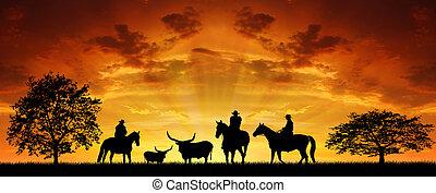 silhuett, boskapsskötare, med, hästar