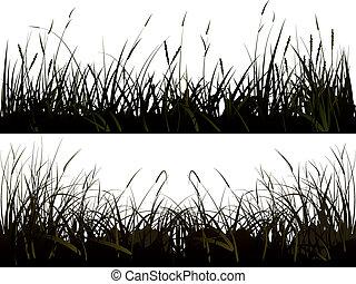 silhuett, grass., äng
