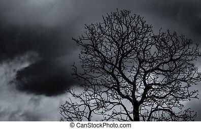 silhuett, konst, svart, hopplös, trist, halloween, grå, träd., despair., död, struktur, sky, träd, död, bakgrund, natur, dag, grenverk, filial, ensam, bakgrund.
