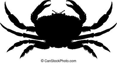 silhuett, krabba