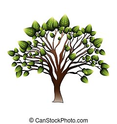 silhuett, träd, med, lövad, grenverk