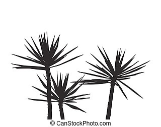Silhuette Palm on the white background