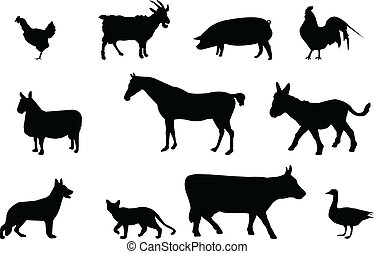silhuetter, dyr, agerjord