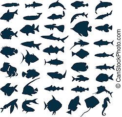 silhuetter, i, hav, og, sø, fishes., en, vektor,...