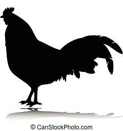 silhuetter, vektor, sort, hanen