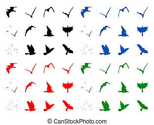 Silhuettes of birds