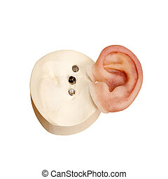 silicona, artificial, oído humano, con, magnético,...