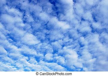 silkesfin, skyn