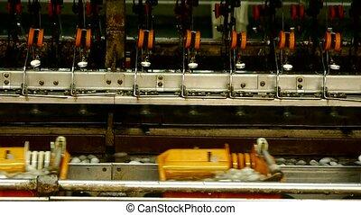 Silkworm cocoon at silk factory. Workers reeling at workshop.