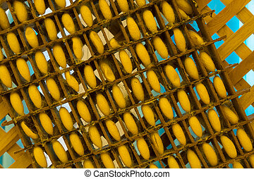Silkworm cocoons in weave bamboo threshing basket - Silkworm...