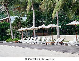 silla de la playa, y, paraguas, en, tropical, playa de arena