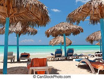 sillas, orilla, océano, paraguas, cubierta