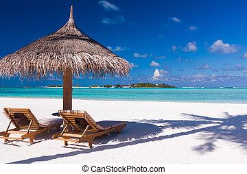 sillas, y, paraguas, en, un, playa, con, sombra, de, palmera