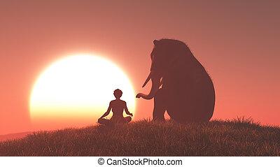 sillouthe, femme, éléphant