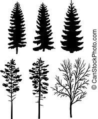 silluettes, floresta, árvores