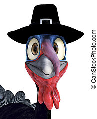 Closeup of a funny silly looking cartoon turkey wearing a pilgrim hat. White background.