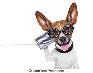 silly ugly dog on the phone with a can