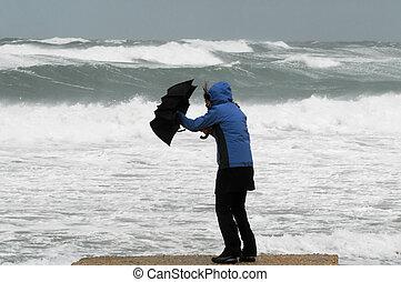 silny, wiatr, i, deszcz, na, plaża