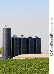 silos on soybean farm