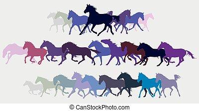 silouettes, vector, caballos, conjunto, corriente, colorido