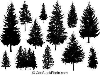 silueta, árboles de pino