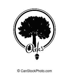 silueta, árvore carvalho