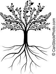 silueta, árvore