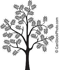 silueta, árvore, isolado, pretas