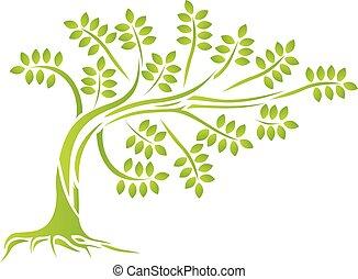 silueta, árvore, verde