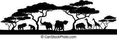 silueta, animal, escena, safari, africano, paisaje