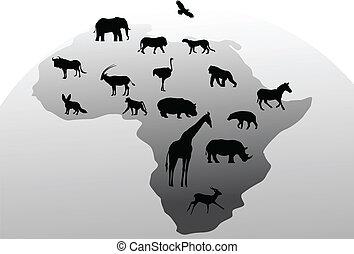 silueta, animal