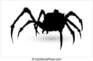 silueta, aranha