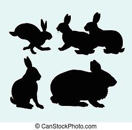 silueta, conejo