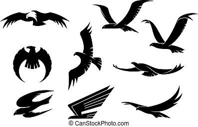 silueta, conjunto, de, vuelo, aves