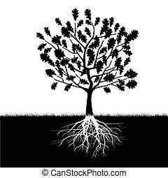 silueta, de, árvore carvalho
