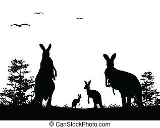 silueta, de, a, canguru, família