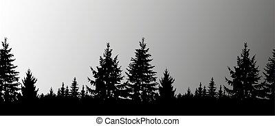 silueta, de, conífero, árboles