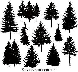 silueta, de, diferente, árboles de pino