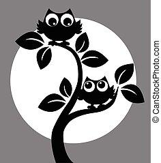 silueta, de, dois, corujas, em, um, árvore