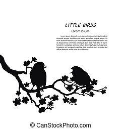 silueta, de, dois pássaros, sentando, ligado, um, floresça ramo