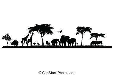 silueta, de, fauna