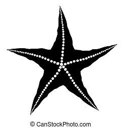 silueta, de, starfish