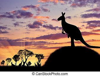 silueta, de, um, canguru, com, um, bebê
