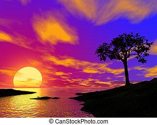 silueta, de, um, ser, único, árvore, ligado, pôr do sol, em,...