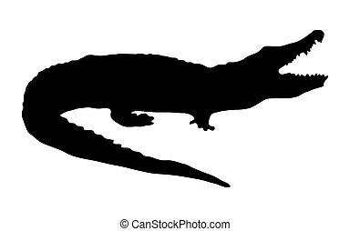 silueta, de, un, cocodrilo, en, un, fondo blanco