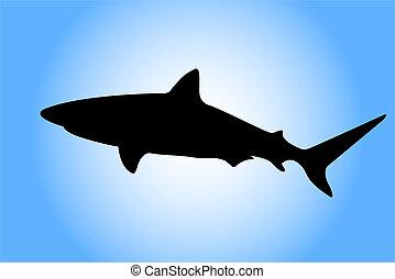 silueta del tiburón