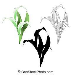 silueta, esboço, folhas, vector.eps, calla, natural, flores...
